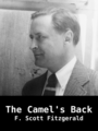 The Camel's Back, by F. Scott Fitzgerald, read by Laurie Anne Walden